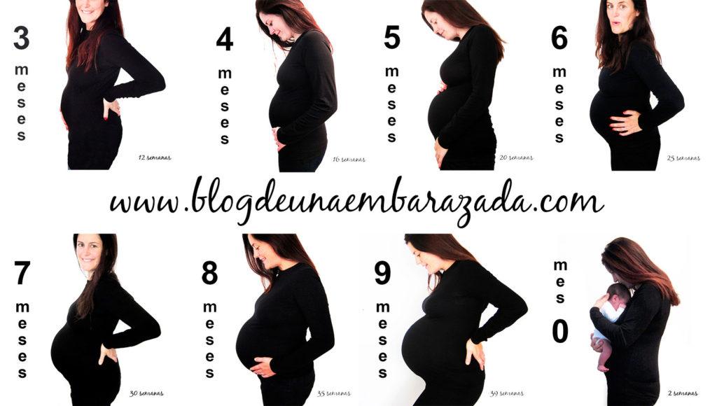 Barriga archives palabra de madre - 4 meses de embarazo ...